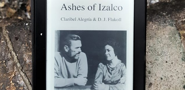 Book #4: the ashes of El Salvador